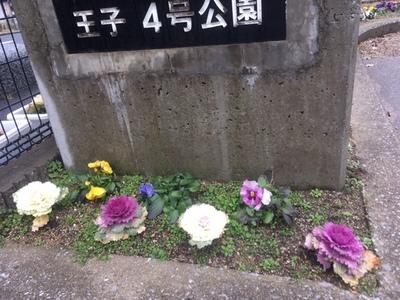 2017-02-11T20 47 09-ad87f.JPG